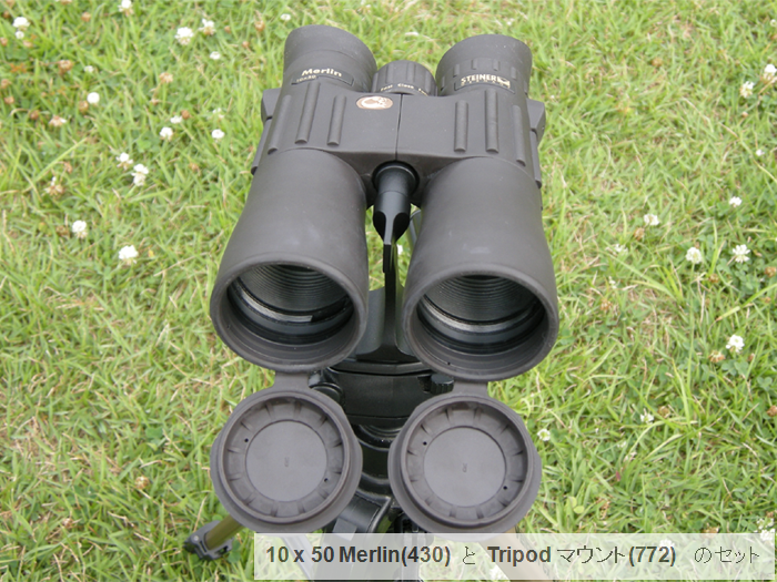 10x50 Merlin (#772)+Tripod Mount